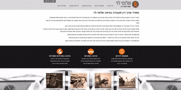 ביקורת מבנה: שלומי לוי משרד עורכי דין